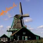 Olanda nascosta 2008